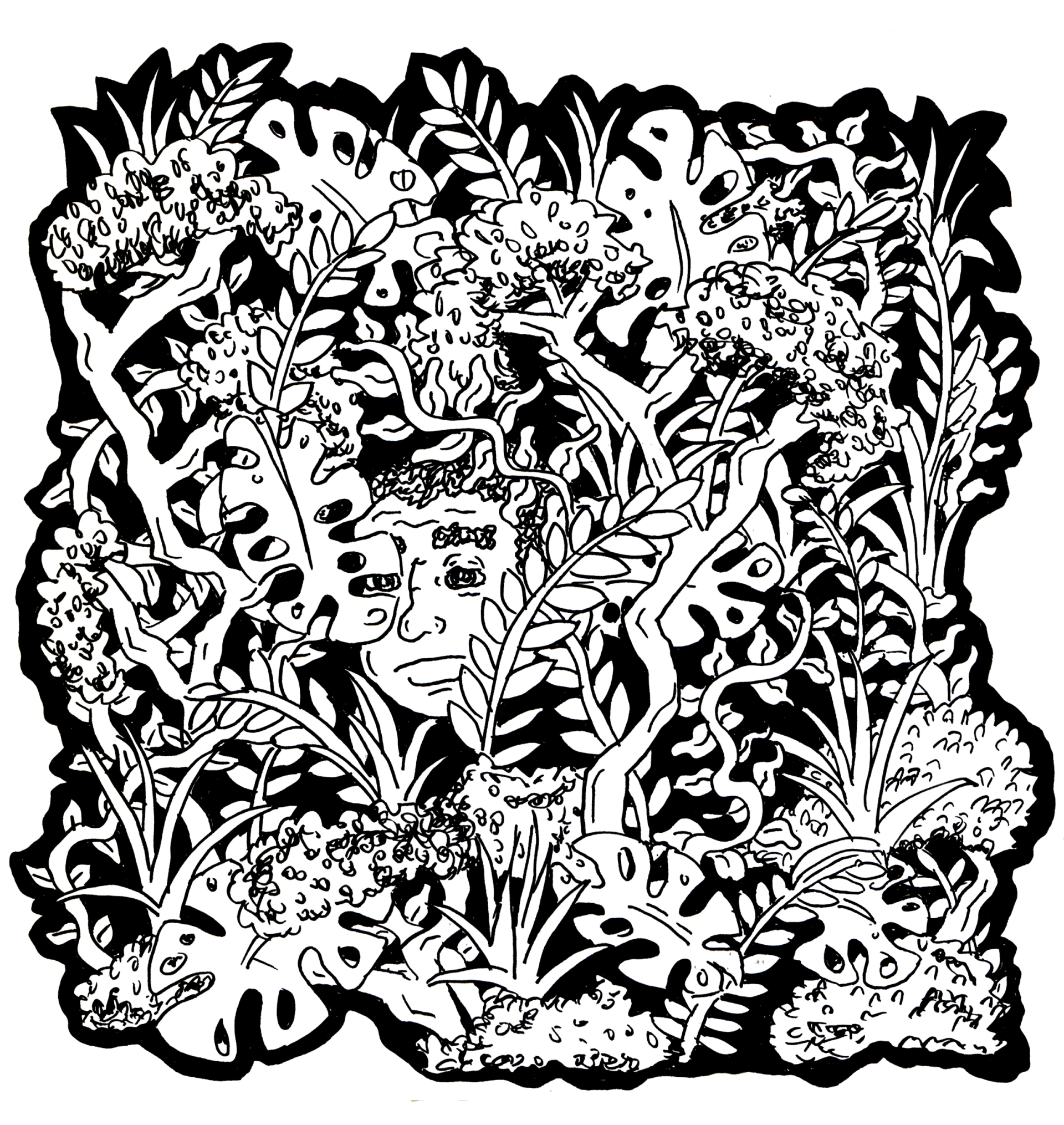 in the plants [single]